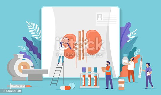istock Research scientists. Science laboratory, chemistry scientists and clinical lab. Medical research items, clinical science laboratories experiments. Kidney inspection, concept vector illustration 1209664248
