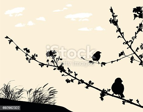Silhouette vector illustration of birds on a branch symbolising spring