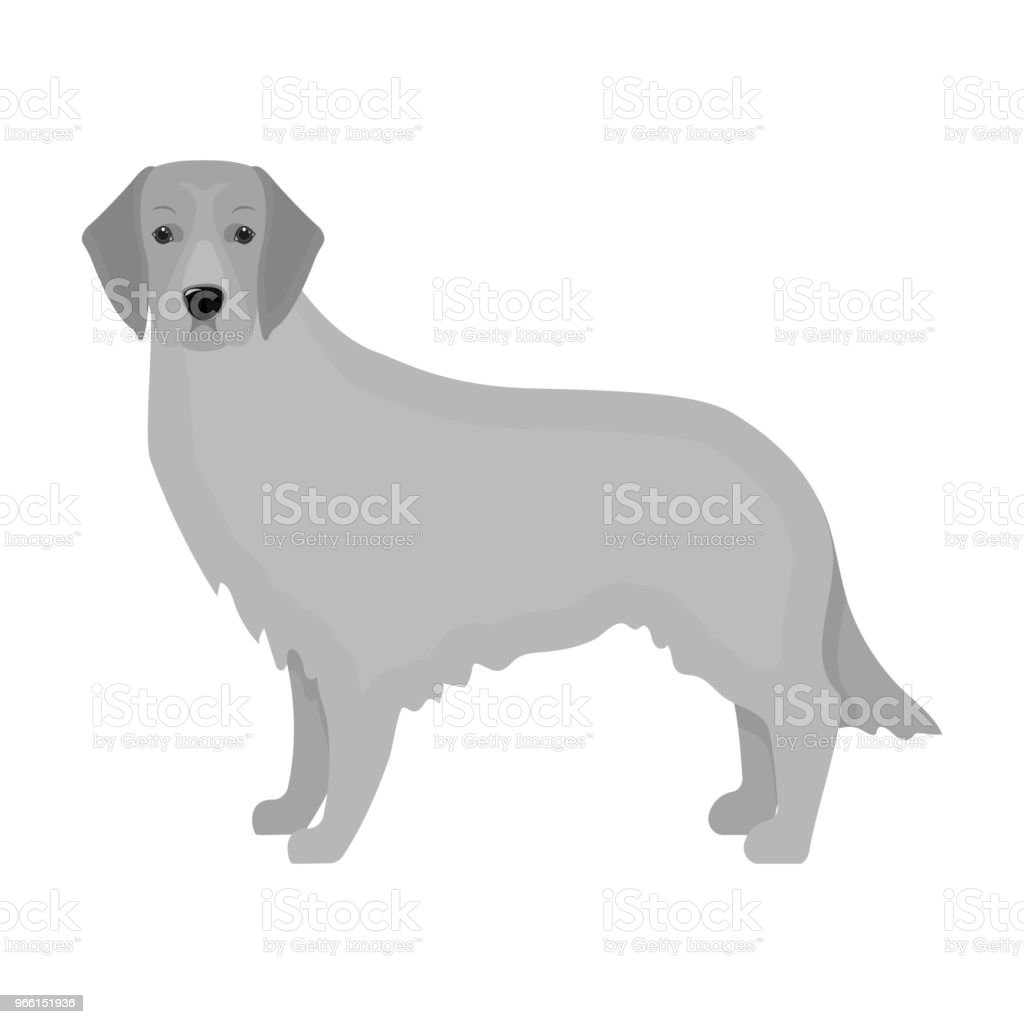 Retriever single icon in monochrome style.Retriever vector symbol stock illustration web. - Royalty-free Animal stock vector