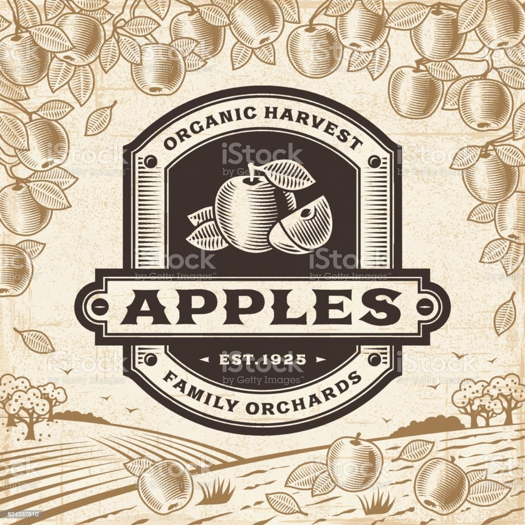 Retro apples label on harvest landscape vector art illustration