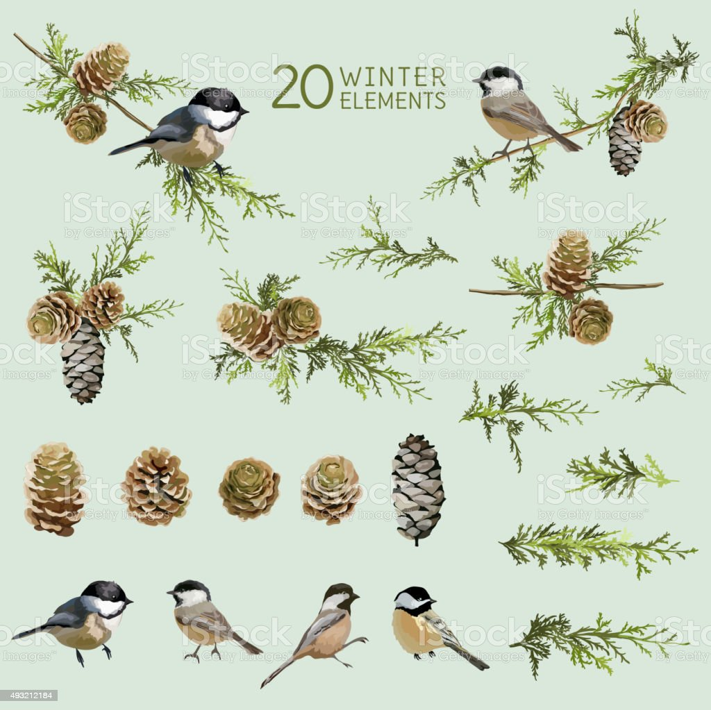 Retro Birds and Winter Elements - in Watercolor Style vector art illustration