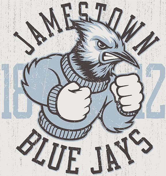 Retro Blue Jays Mascot Design vector art illustration