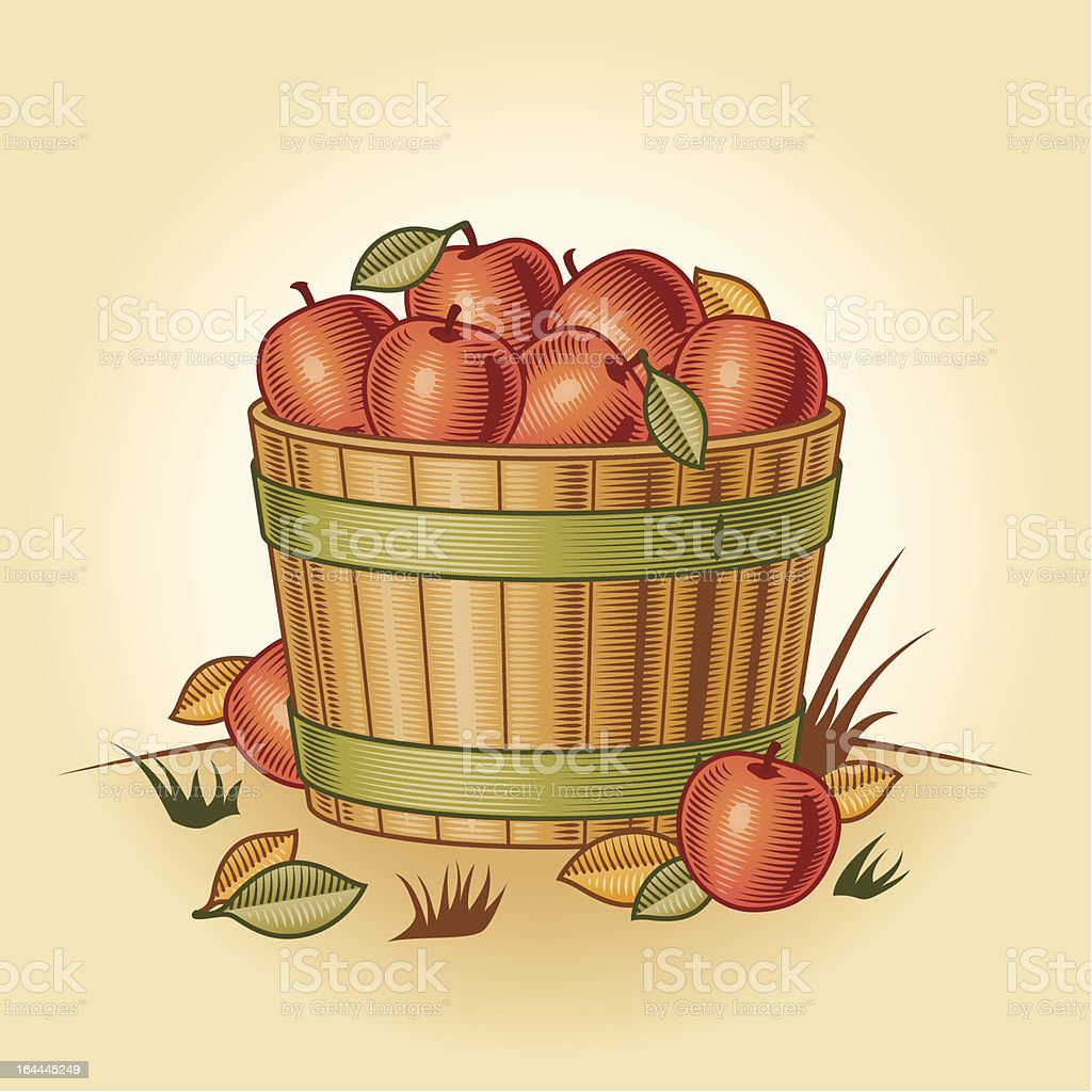 Retro bushel of apples royalty-free stock vector art