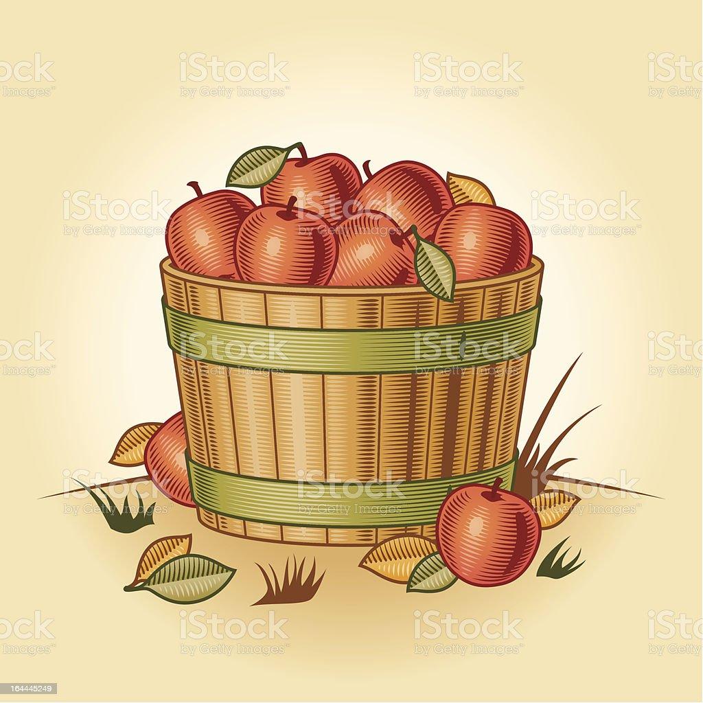 Retro bushel of apples vector art illustration