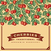 Retro cherry harvest card
