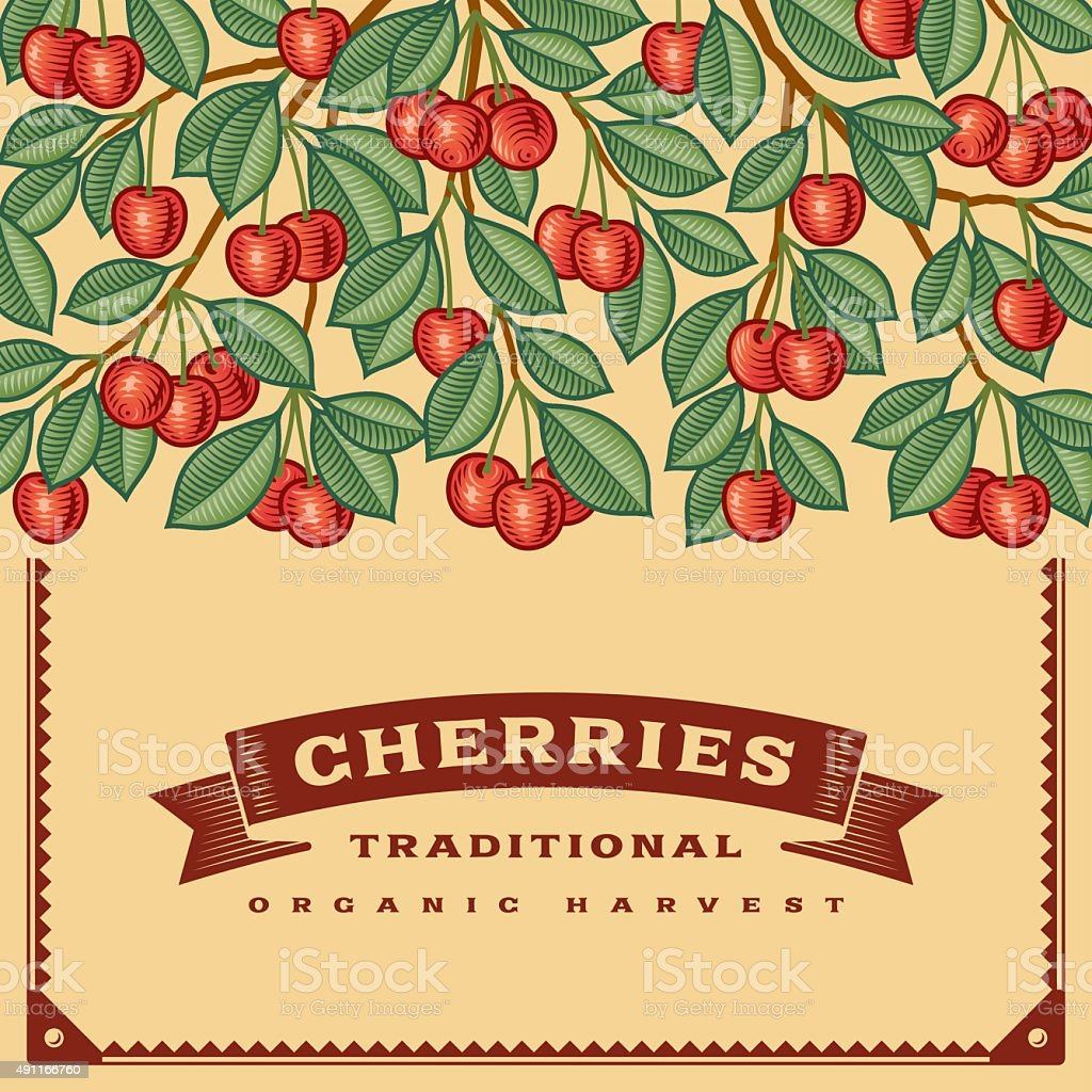 Retro cherry harvest card vector art illustration