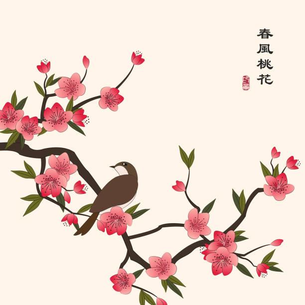 Retro colorful Chinese style vector illustration peach blossom flower and a little bird standing on the branch Retro colorful Chinese style vector illustration peach blossom flower and a little bird standing on the branch. Translation for the Chinese word : The peach flower bloom in the spring breeze. peach blossom stock illustrations