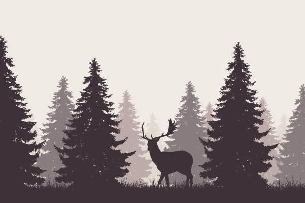 Best Deer Hunting Illustrations Royalty Free Vector
