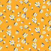 Retro daisy simple yellow florals seamless vector pattern. Apricot yellow and white chamomile floral fabric textile print background.