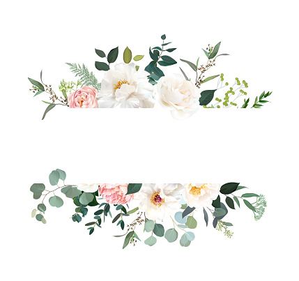 Retro delicate vector design flower horizontal banner. Creamy peony, pink garden rose, white ranunculus, eucalyptus, greenery, sage and blush. Wedding floral garland. Watercolor. Isolated and editable