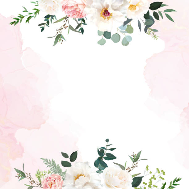 Retro delicate wedding card with pink watercolor texture and flowers Retro delicate wedding card with pink watercolor texture and flowers. White peony, pink ranunculus, dusty rose, eucalyptus, greenery. Floral vector design frame. Elements are isolated and editable weddings background stock illustrations