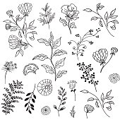 Retro Doodled decorative Plant elements. Large set of fun doodles such as plants, weeds and flowers. Includes blooms and branches.
