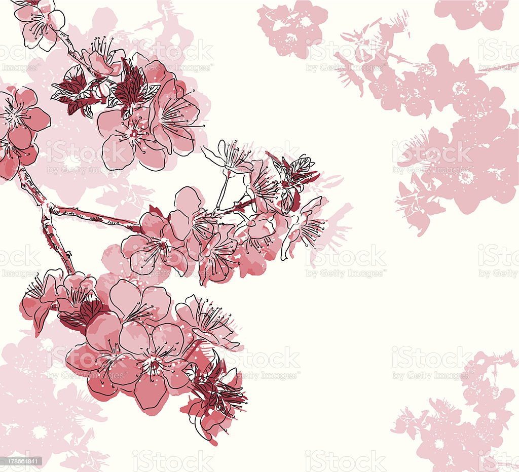 Retro floral background with a flower sakura vector art illustration
