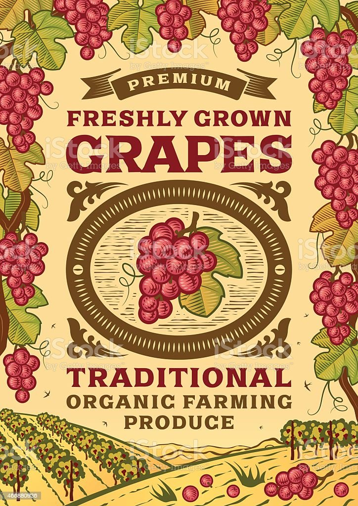 Retro grapes poster vector art illustration