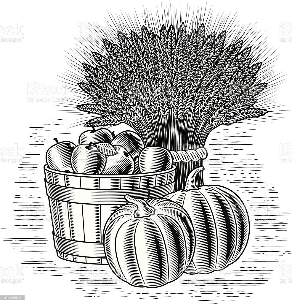 Retro harvest still life black and white royalty-free retro harvest still life black and white stock vector art & more images of agriculture
