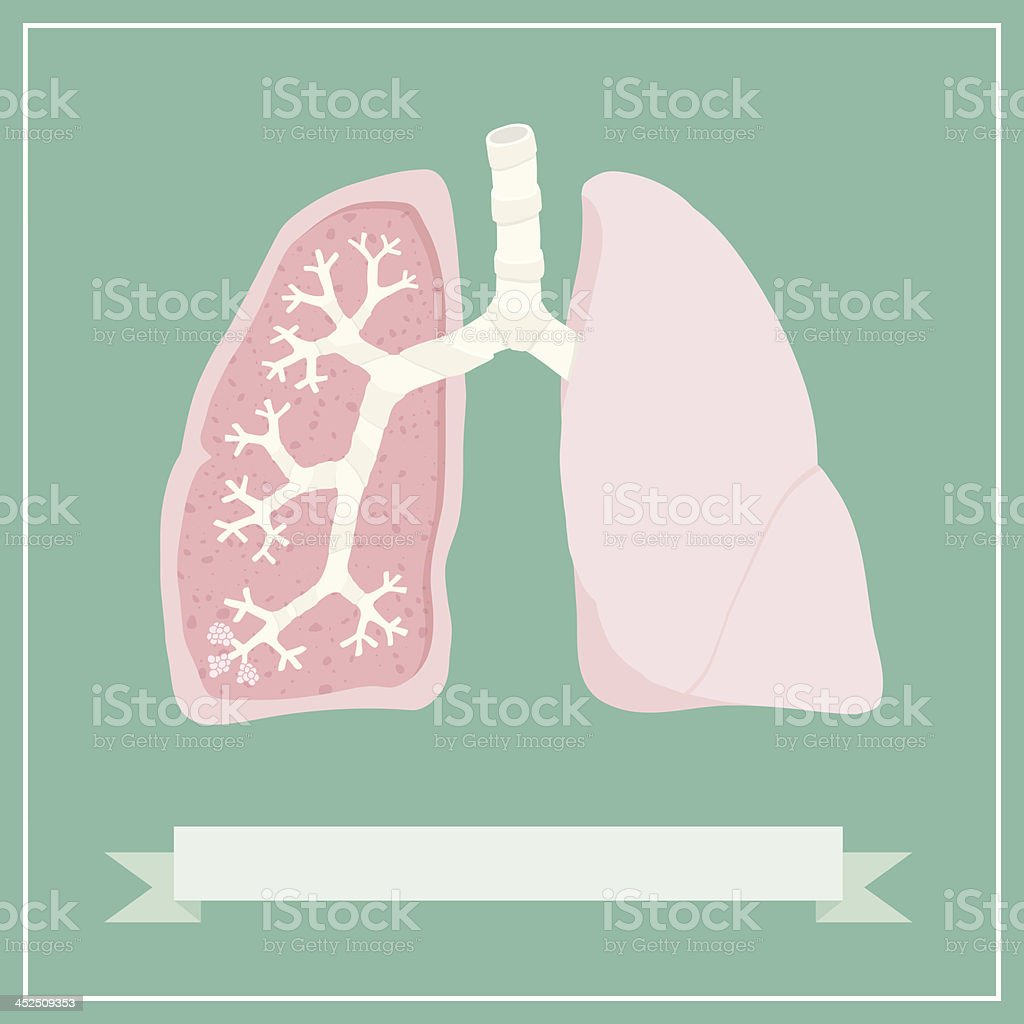 Retro Lungs Diagram vector art illustration
