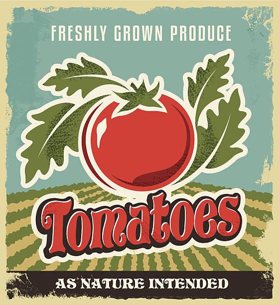 ilustrações de stock, clip art, desenhos animados e ícones de tomate publicidade vintage poster retro-rótulo da caixa - tomate