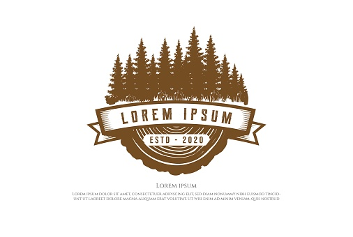 Retro Vintage Pine Cedar Spruce Evergreen Fir Hemlock Larch Cypress Trees Forest with Wood for Timber Logging Logo Design Vector