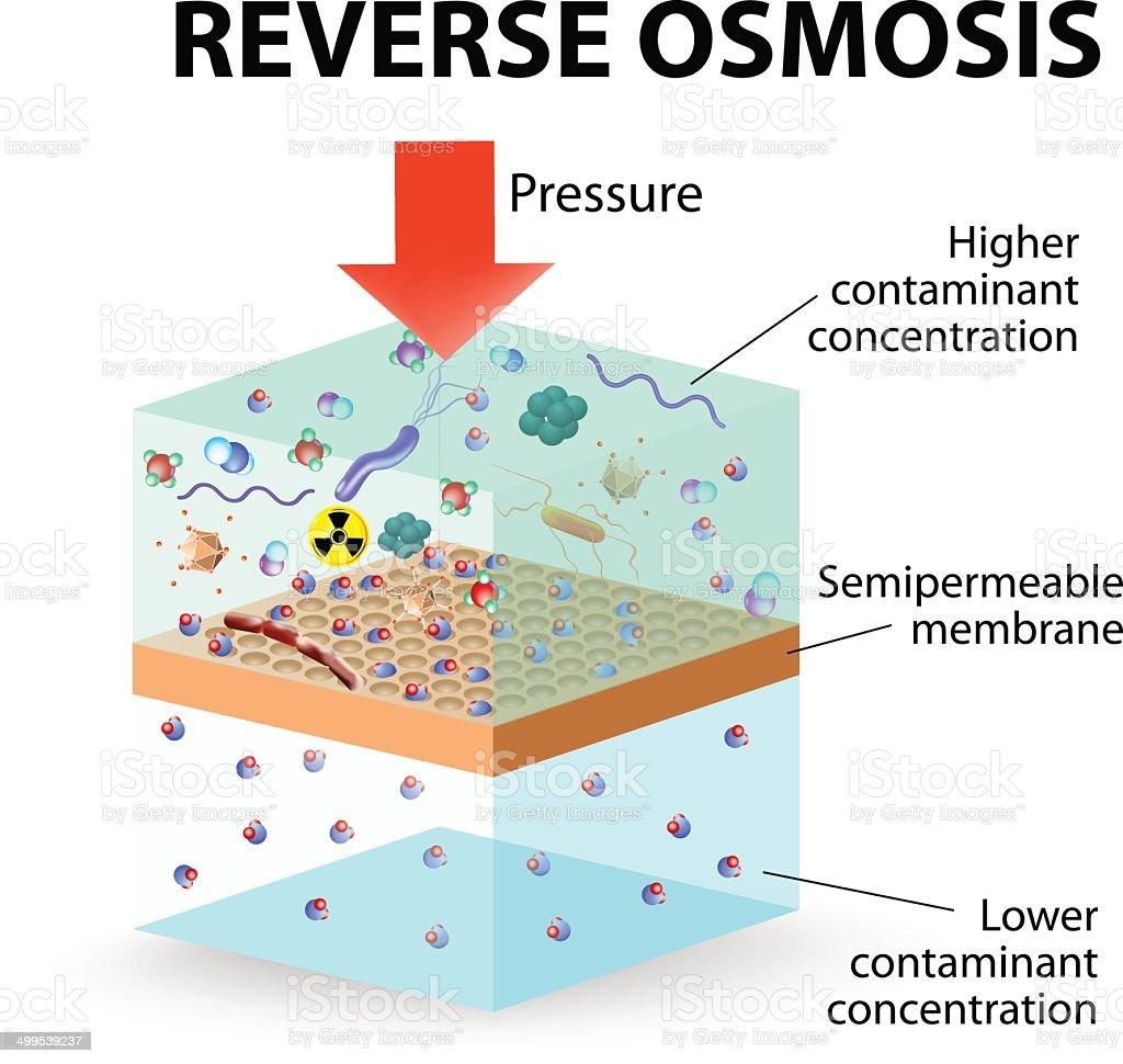 Reverse Osmosis vector art illustration