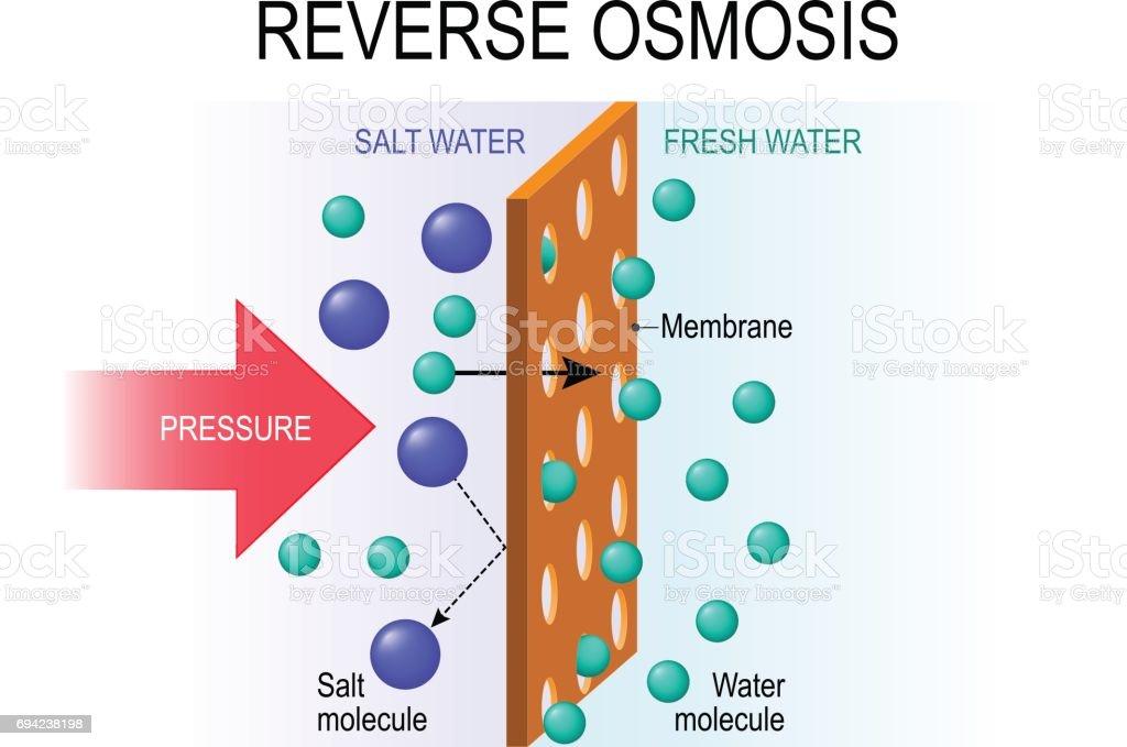 reverse osmosis. vector art illustration