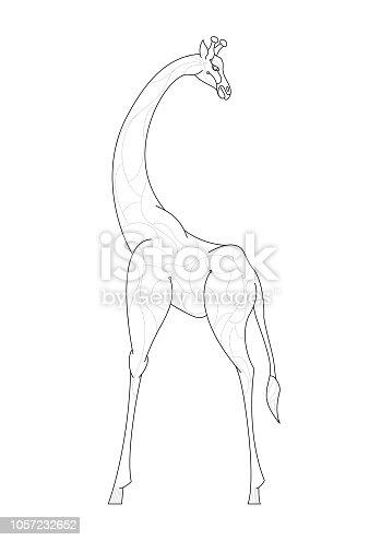 istock Reviewing Giraffe (Line Art Doodle Drawing) 1057232652