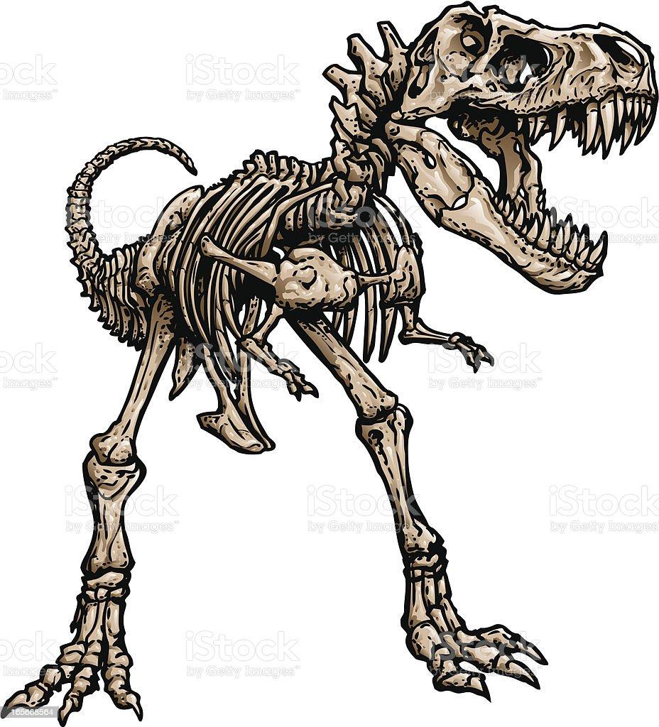 T Rex Skeleton royalty-free t rex skeleton stock vector art & more images of ancient