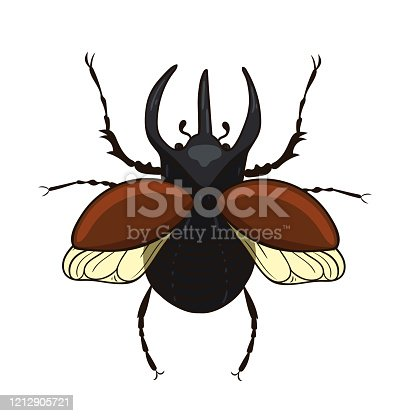 istock Rhinoceros beetle isolate on a white background. Vector graphics. 1212905721