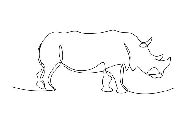 Rhinoceros Rhinoceros in continuous line art drawing style. Minimalist black linear sketch isolated on white background. Vector illustration animal stock illustrations