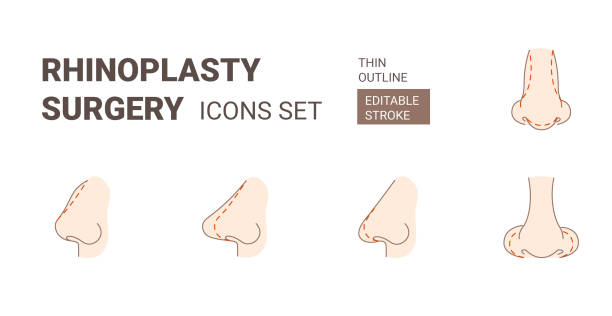 Rhinoplasy plastic surgery icons set with editable stroke Rhinoplasy plastic surgery icons set. Nose shape correction operations icons set with outline style and editable stroke. septum stock illustrations