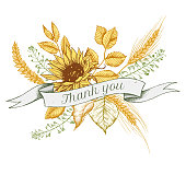 Ribbon design of sunflower and rye with thank you sing. Hand drawn vector illustration stock
