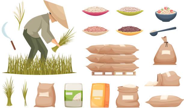 stockillustraties, clipart, cartoons en iconen met rijstzakken. landbouwproducten bruine en witte rijst die vectorillustraties van voedselingrediënten vervoert - bloem stapelvoedsel