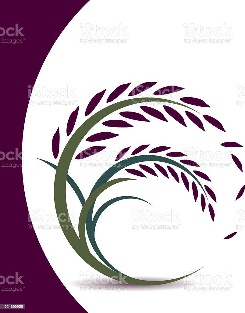 Rice berry design on white background vector art illustration