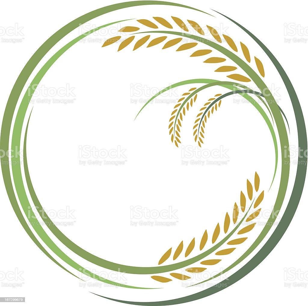 Rice design vector art illustration