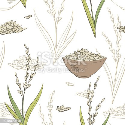 Rice plant graphic color seamless pattern background sketch illustration vector