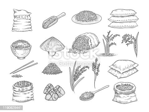 Rice sacks. Natural agriculture objects wheat grains rice food vector hand drawn collection. Illustration rice sack, grain and seed, stylized sketch organic