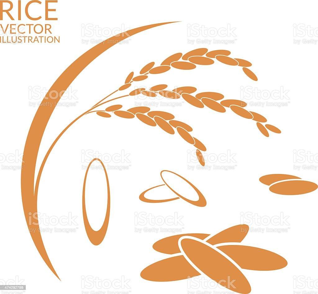 Rice. Set vector art illustration
