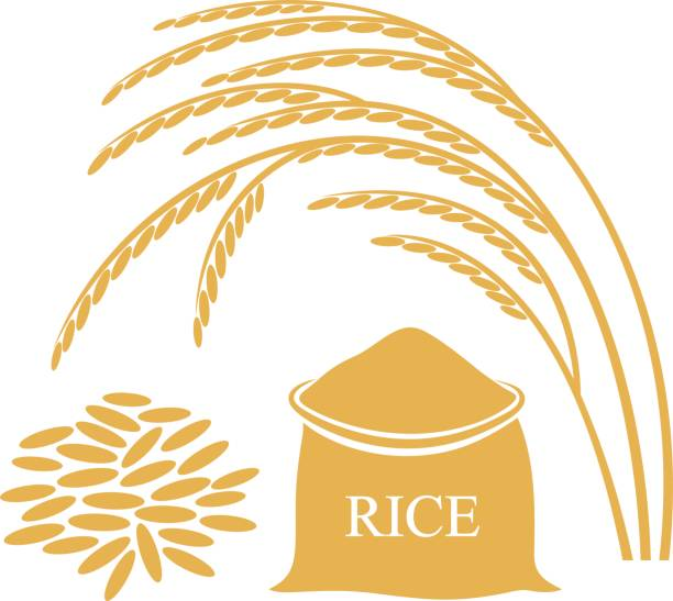 Best Rice Bag Illustrations, Royalty-Free Vector Graphics ...