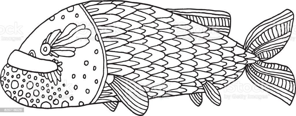 Adult Animal Animal Imitation Cartoon Cute Richly Decorated Fish Hand Drawing