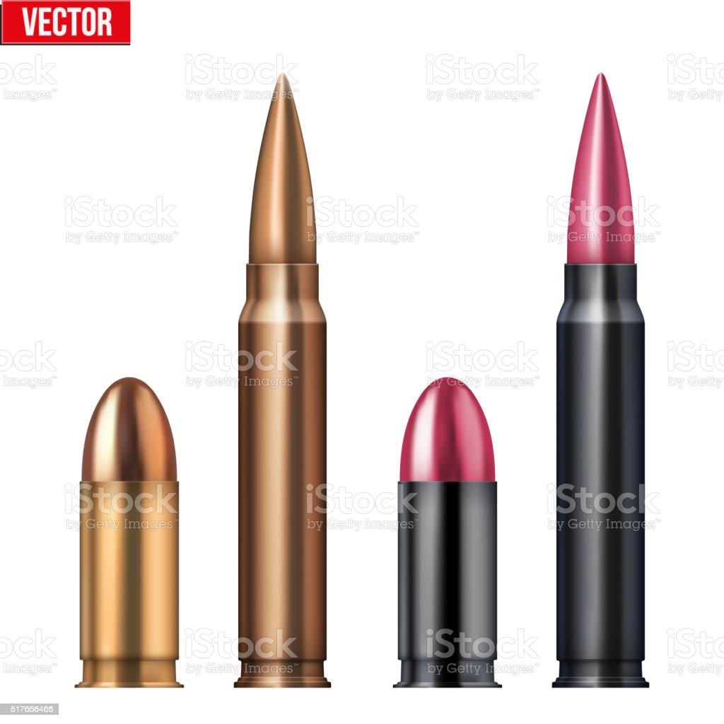 Rifle and revolver Bullets vector art illustration
