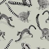 istock Ring-tailed Lemur Seamless Repeat Pattern 1270755171