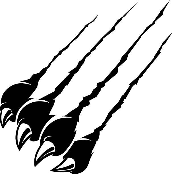 Rip Claw Black Panther, Wild Animal vector art illustration