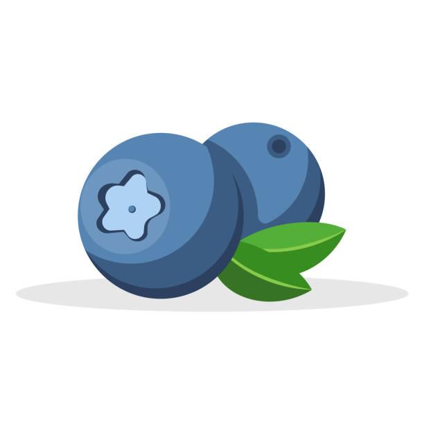 illustrazioni stock, clip art, cartoni animati e icone di tendenza di ripe bilberry icon isolated on white background. vector illustration. - mirtilli