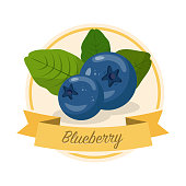 Ripe blueberries with name vector illustration. Organic jam tag. Eco juice circle sticker. Berry flavoured product label, logo. Summer seasonal harvest. Farming, agriculture. Raw fruit cartoon clipart
