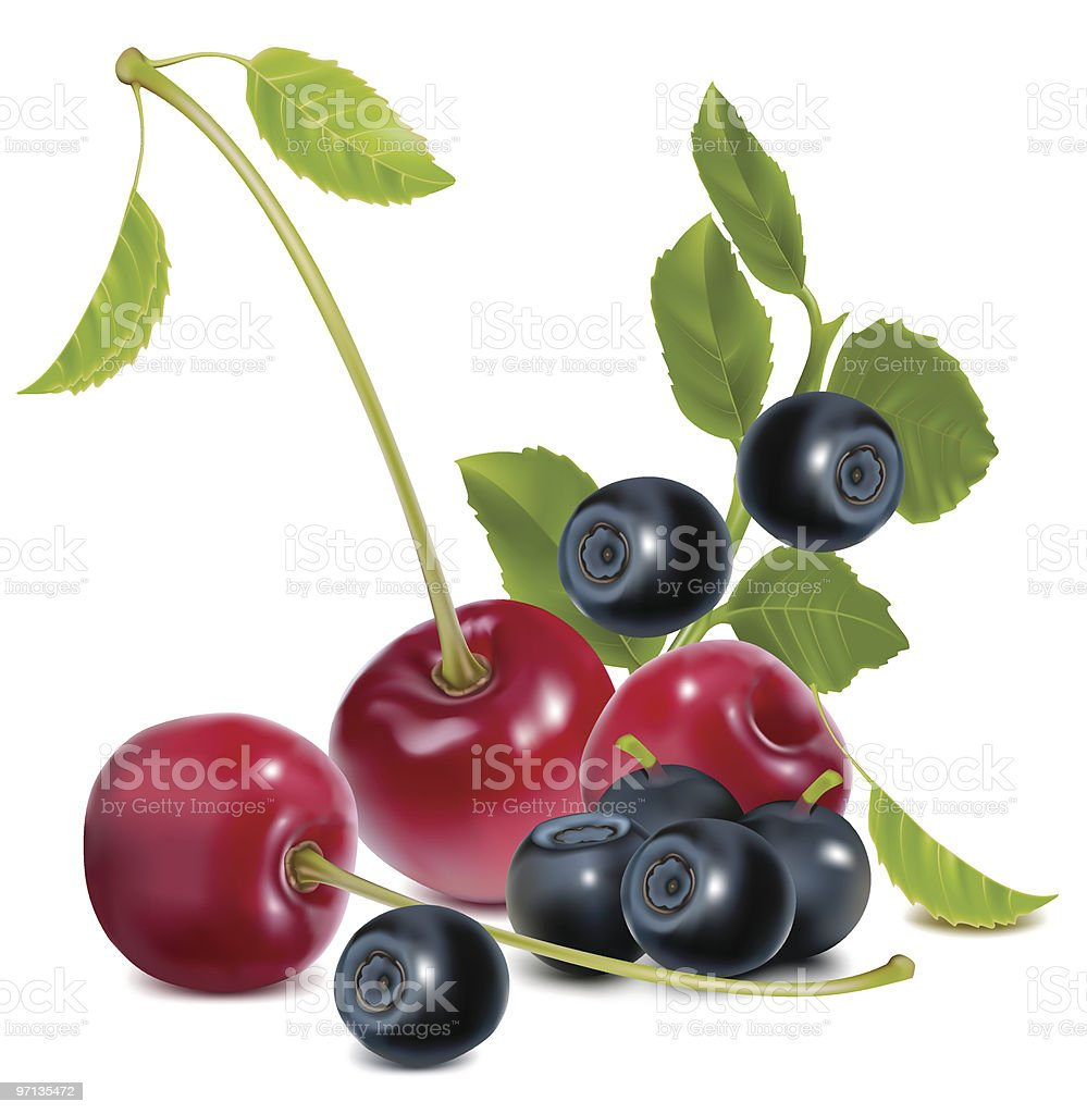 Ripe cherries and blueberries with leaves. royalty-free stock vector art