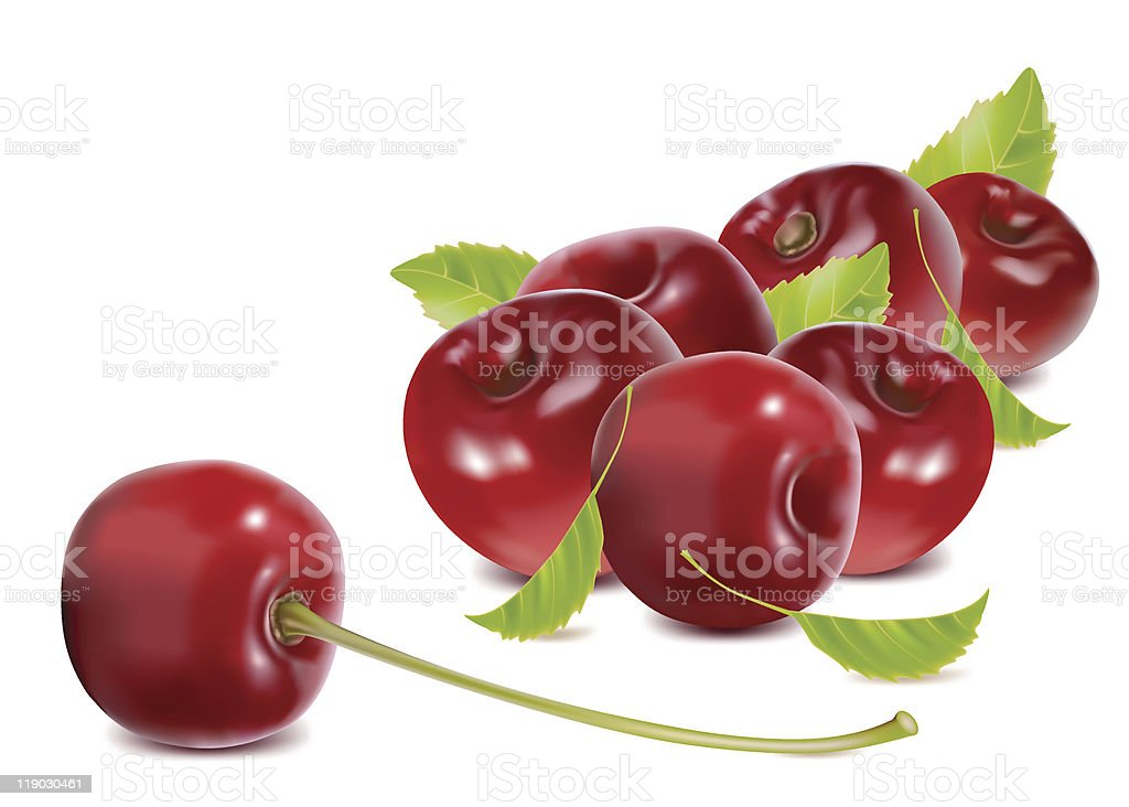 Ripe cherries with leaves. royalty-free stock vector art