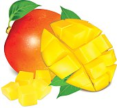 Free Mango Fruit Clipart and Vector Graphics - Clipart.me
