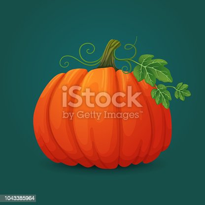 Vector icon. Ripe oval pumpkin with leaves and vines. Halloween, harvest symbol.