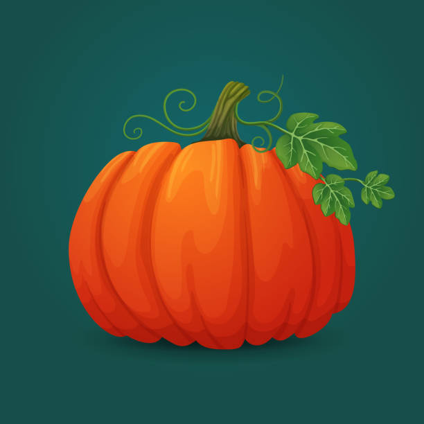 ripe oval pumpkin icon with leaves and vines. - pumpkin stock illustrations