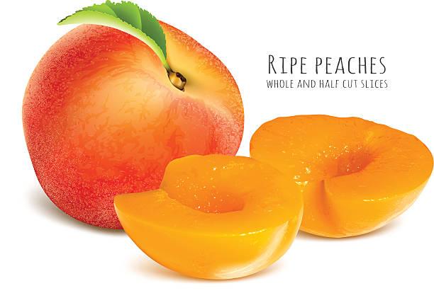 reife pfirsiche, ganzes und halbes-scheiben. - nektarinenmarmelade stock-grafiken, -clipart, -cartoons und -symbole