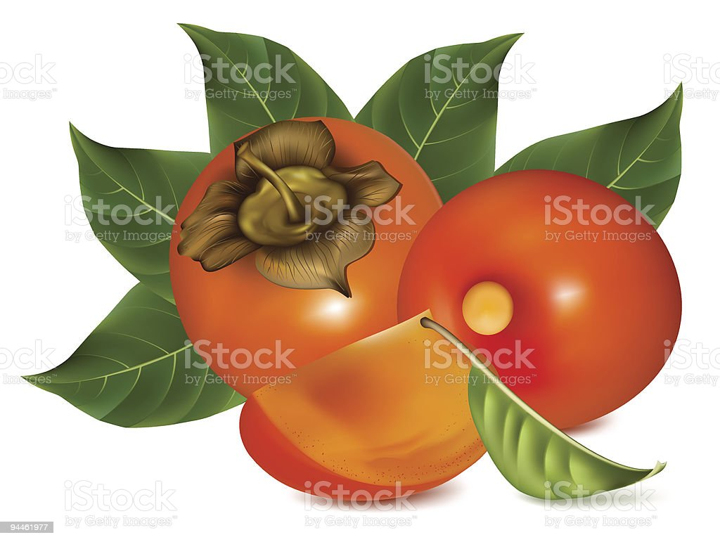 Ripe persimmons with leaves. royalty-free ripe persimmons with leaves stock vector art & more images of color image